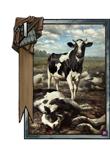 Prize-Winning Cow